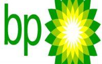 BP 2go in Martinborough