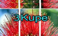 3kupe in coopers beach