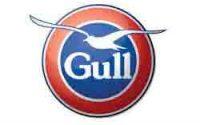 gull in paengaroa