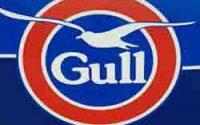 gull in taneatua