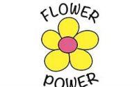 flower power in te awanga